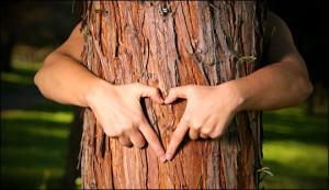 treehugger-love